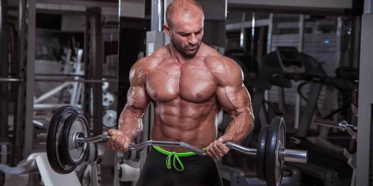 Pontos Básicos para Treino de Musculação