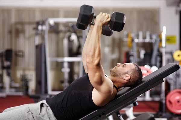 utilizar pesos livres nos exercícios de musculação