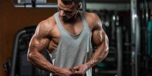 Imagem de Conheça 13 Dicas para Acelerar Seus Ganhos de Massa Muscular!
