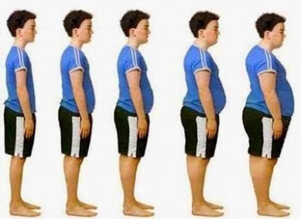 Ganhando Gordura Corporal