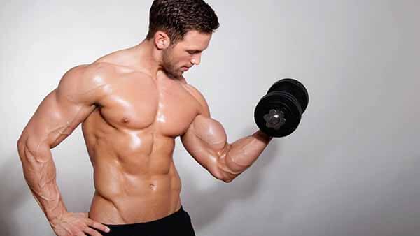 Aquecimento dos Bíceps