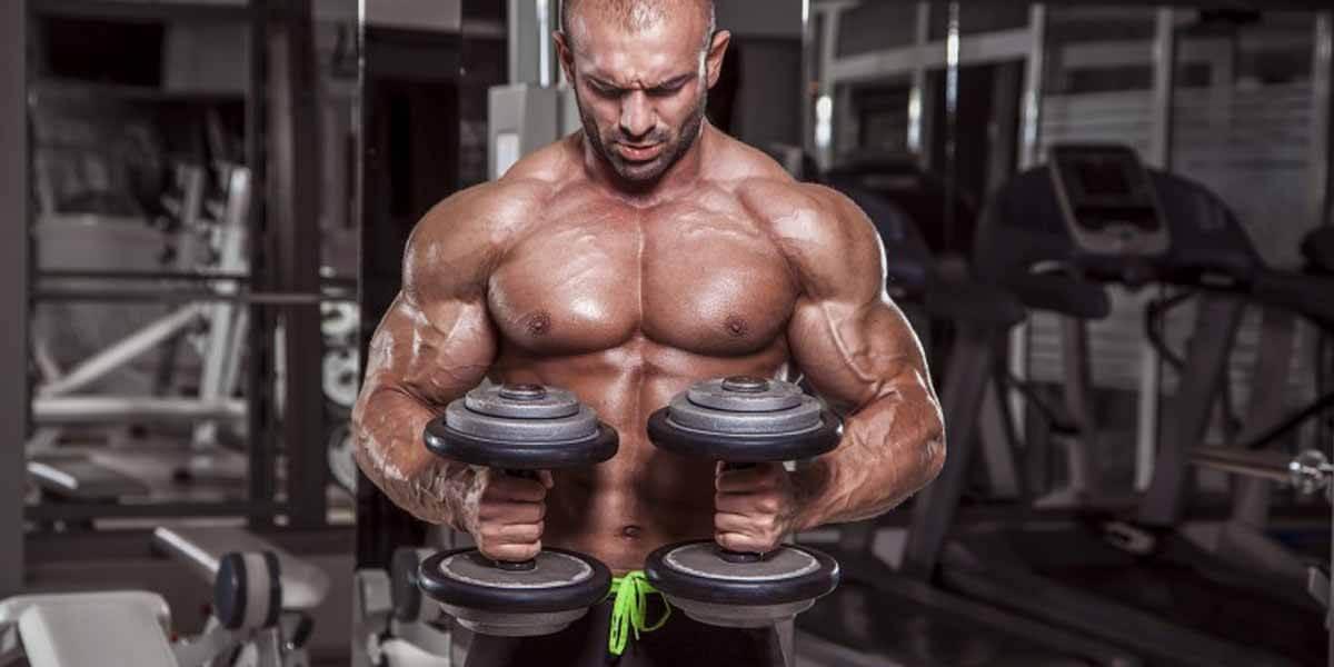 melhor-exercicio-musculacao-existe