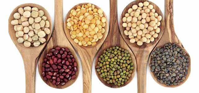 diferentes alimentos leguminosos
