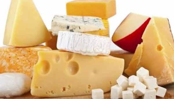 Coloque queijos gordos na sua dieta