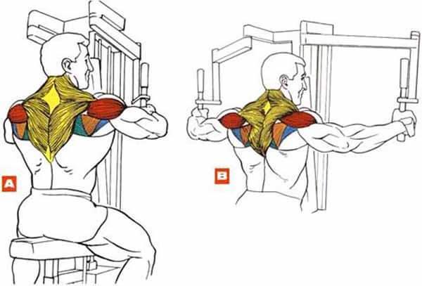 Exercício para ombros: crucifixo invertido na maquina