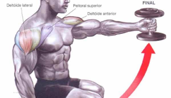 Exercício ombro: elevação frontal com pegada neutra sentado