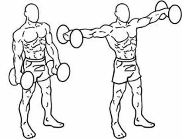 Exercício para ombros elevação lateral com halteres