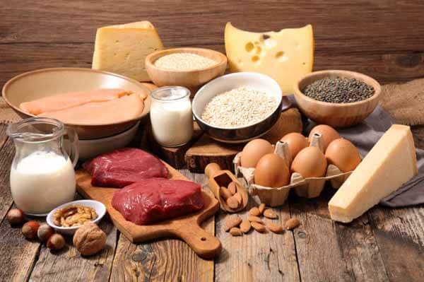 Outras fontes de proteínas além do leite