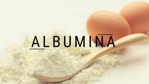 ovos excelente fonte de albumina