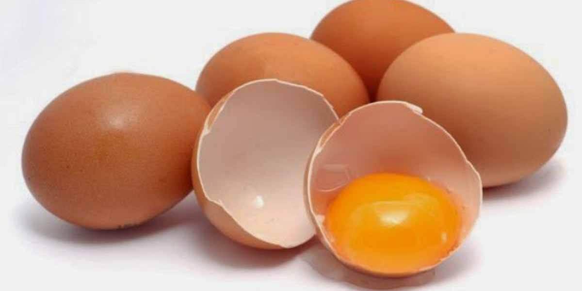 ovos-excelente-fontes-de-vitaminas-e-minerais