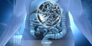 Imagem de Probióticos: As bactérias benéficas para nosso organismo!