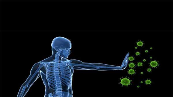 O zinco aumenta a imunidade