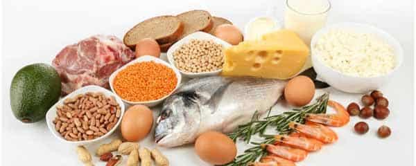alguns alimentos ricos em proteínas