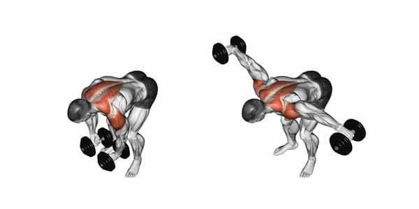 exercício para os ombros crucifixo invertido halteres