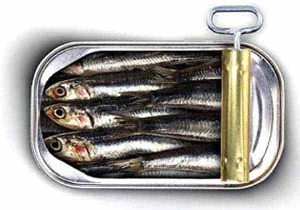 Importância da sardinha para o ganho de massa muscular