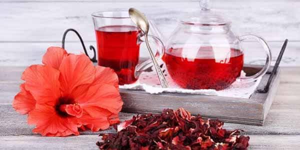 Chá de hibisco e uma otina opção para quem precisa emagrecer