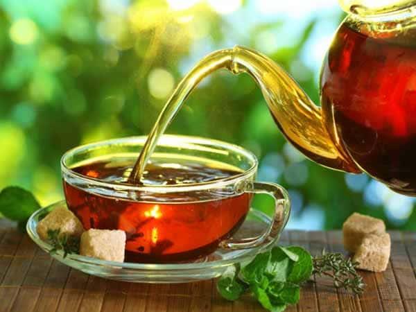 Chá mate para queima de gordura corporal
