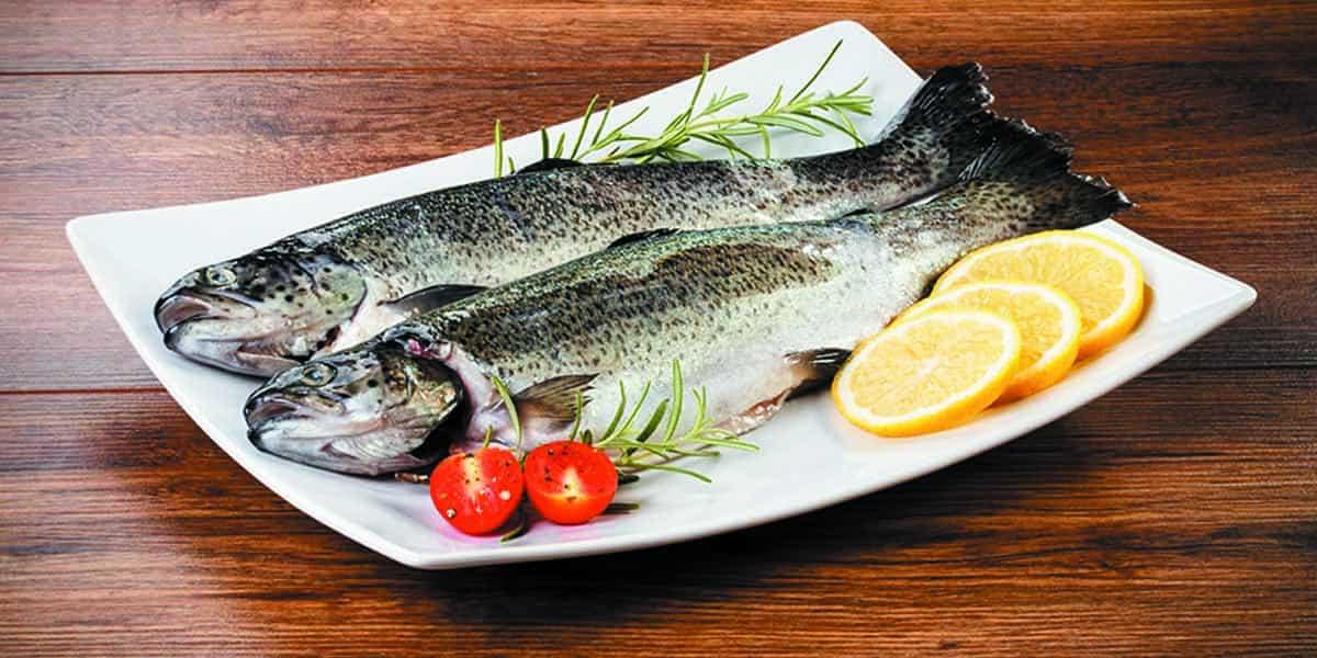 beneficios-de-consumir-pescados