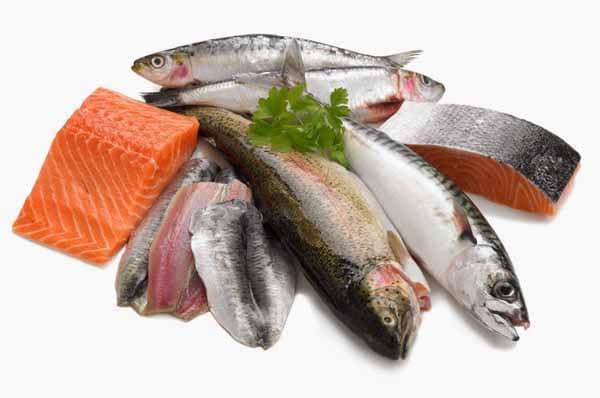 endomorfos devem consumir mais peixes