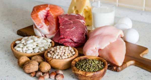 boas fontes de proteínas