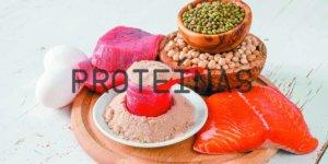 Imagem de Proteínas: Aprenda Tudo Sobre Este Macronutriente!
