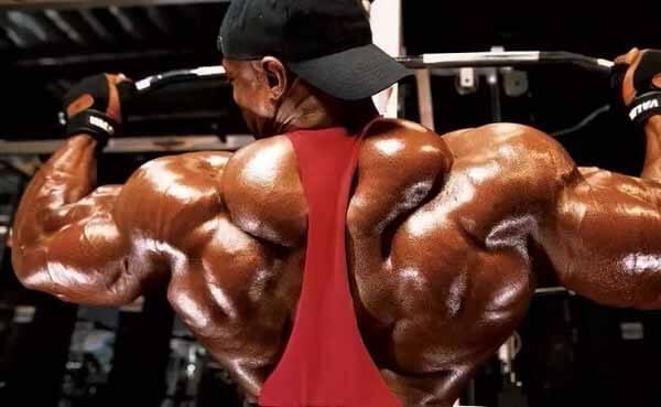 ronnie coleman exercício treino costas