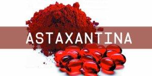 Imagem de Astaxantina: Um dos melhores antioxidantes do mundo!