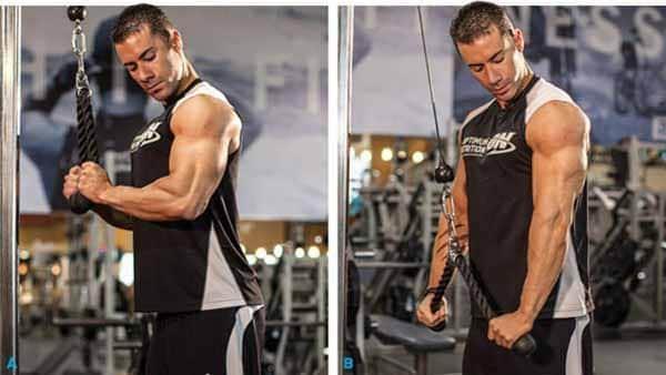 aquecimento triceps corda
