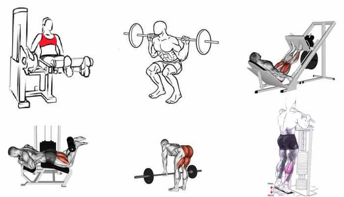 exercícios pernas panturrilhas