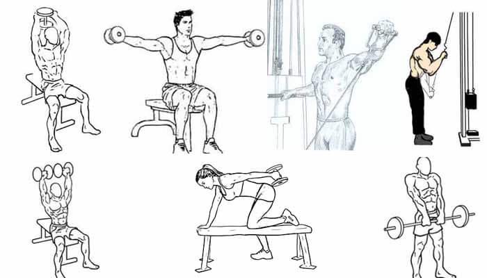 exercicios treino deltoides triceps