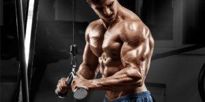 Imagem de Aprenda 4 Dicas para Melhorar seu Treino de Tríceps!