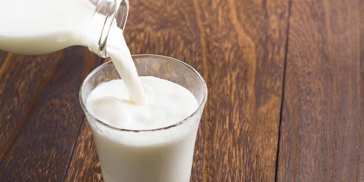 Conheça 8 Motivos para Você Incluir o Leite em sua Dieta
