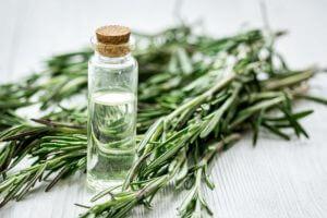 Image de l'huile essentielle de romarin: à quoi sert-elle et avantages?